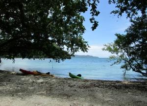 Kayak 06